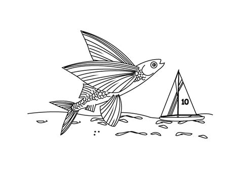 coloring pages flying fish