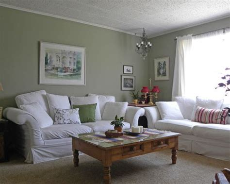 sage green living room decorating ideas home constructions sage green walls houzz