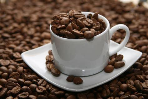 Xo Coffee Robusta gi 225 c 224 ph 234 t 226 y nguy 234 n tăng l 234 n 37 7 38 1 triệu đồng tấn