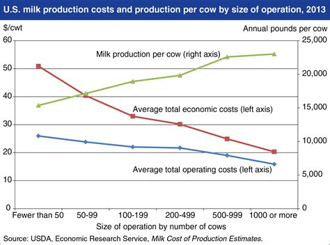 c section and milk production dairy farm operations is bigger really better the
