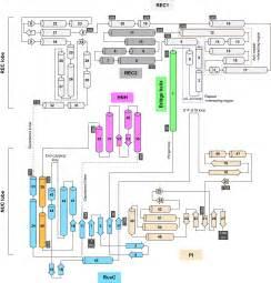 home design and decor shopping context logic 100 46 best duplex u0026 multiplex patent us6999506