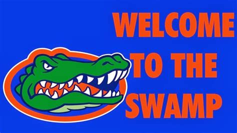 welcome to the university of south florida ta fl life with ragdolls pay back go gators