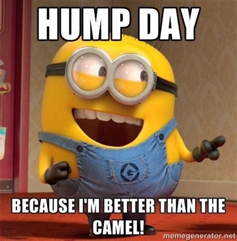 Happy Hump Day Meme - hump day because i m better than the camel dave le