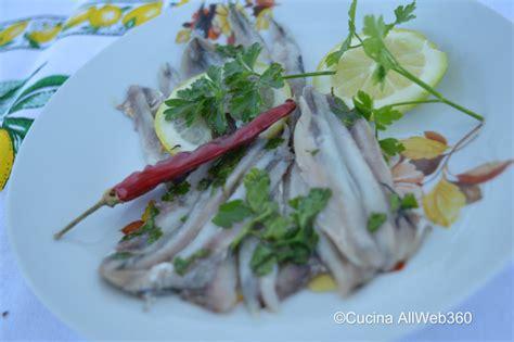 come cucinare le alici marinate alici marinate la ricetta originale con aceto e fette di
