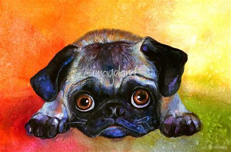 pug paintings for sale stunning quot pug posters quot artwork for sale on prints