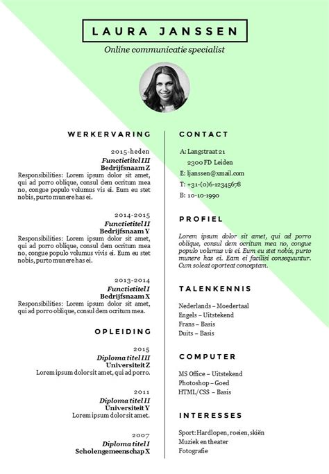Curriculum Vitae Sjabloon Word Gratis 56 best cv advies en ontwerp de leydsche images on