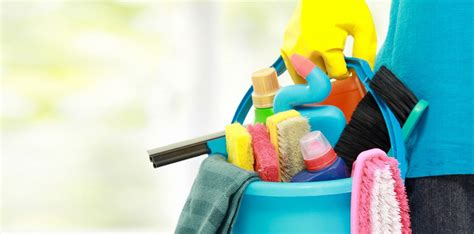 impresa pulizie pavia pulizia uffici a pavia impresa di pulizie a pavia