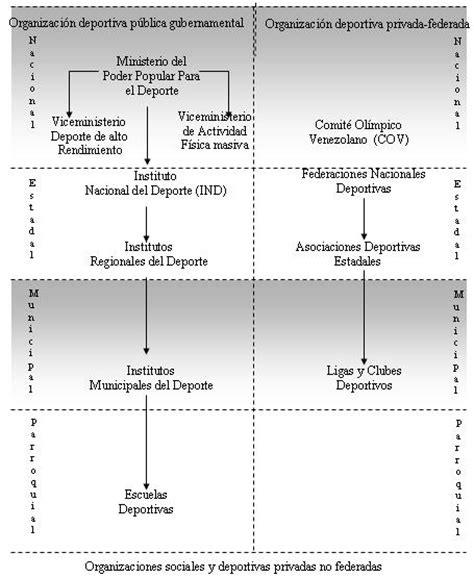 bases legales y de organizaci n estructural de la bases legales y de organizaci n estructural de la