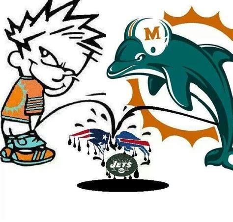 imagenes miami dolphins mejores 3778 im 225 genes de miami dolphins memes en pinterest