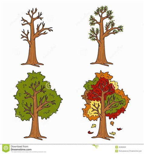 illustration of season trees four seasons vector set of trees stock vector image 48485820