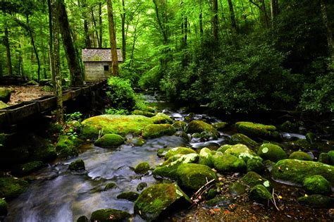 Great Smoky Cabins by Gatlinburg Cabin On The River