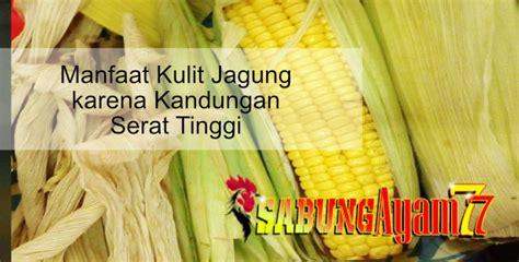 manfaat kulit jagung  kandungan serat tinggi