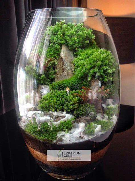 17 best ideas about water terrarium on pinterest water plants indoor water garden and