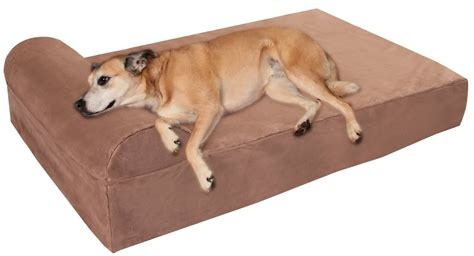 giant dog bed looking for quality dog beds we pick 5 of the best