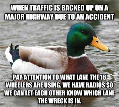 Mallard Duck Meme - livememe com actual advice mallard