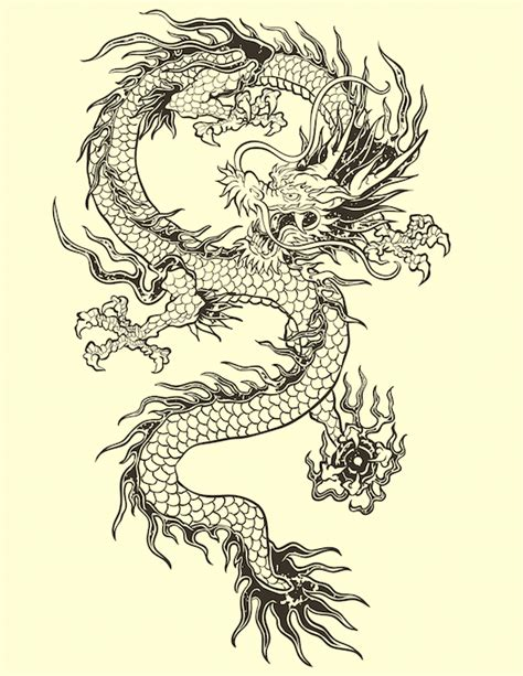 dragon tattoos meanings meaning tattoos with meaning