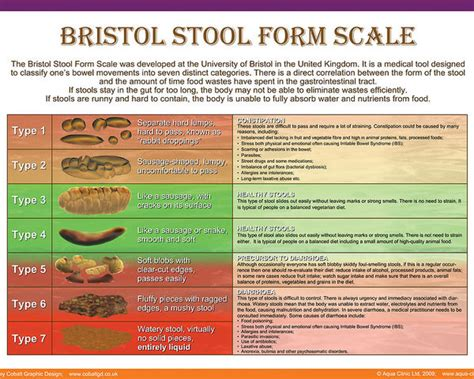 Bristol Stool Scale Poster by Bristol Stool Form Scale Poster By Galina Imrie