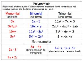 color coded examples of polynomials mranneilsblog