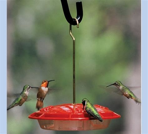 hummingbird feeder bee proof the bird man
