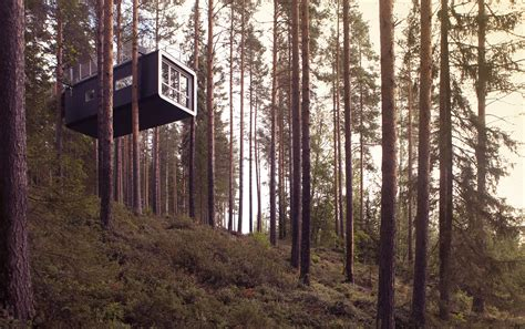 tree hotel sweden treehouses and big dogs are these the worlds quirkiest cabins