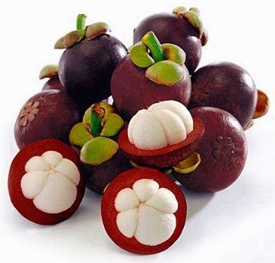 facts  benefits   mangosteen fruit  health