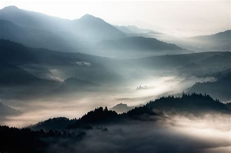 Landscape Photography With Sun Beautiful Sun Kissed Landscape Photos Bathed In Fog