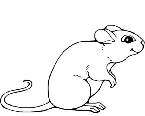 Index Of Teacher Ulrich Documents Shakespeare A Midsummer Mouse Coloring Pages