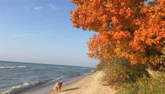 fall colors michigan fall colors peak in southern lower michigan woodtv