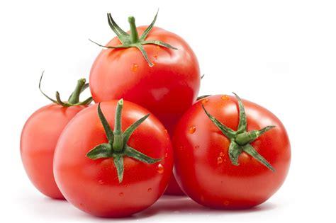 wann werden tomaten gepflanzt tomaten ohne sie w 228 re italien nicht vorstellbar