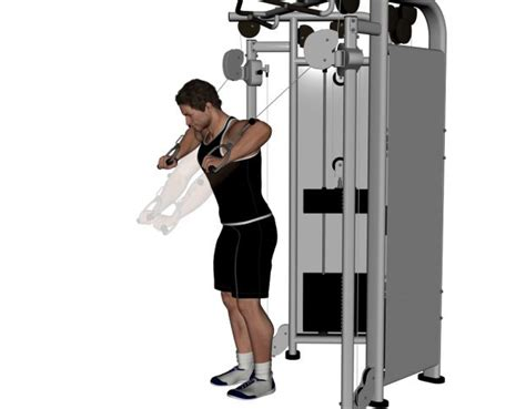 cable bench press 21 best images about chest workout on pinterest cable