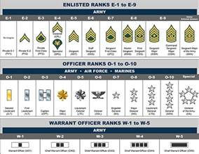 basic rank structure