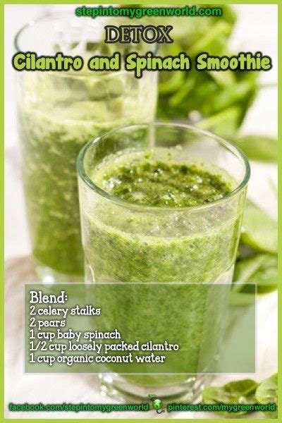 Cilantro Detox Recipe Smoothie by A4l Some Just Wanna The World Burn Some