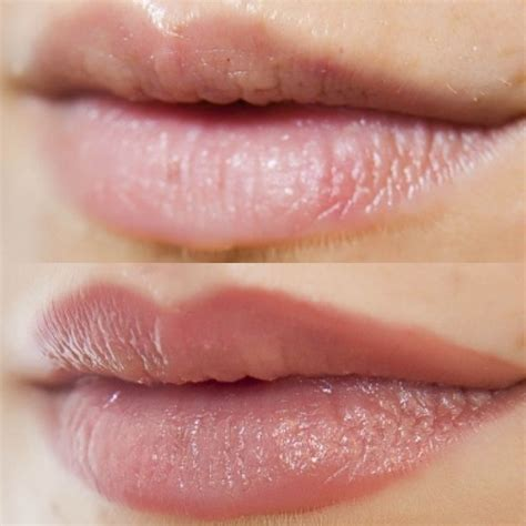 semi permanent makeup lips before and after mugeek