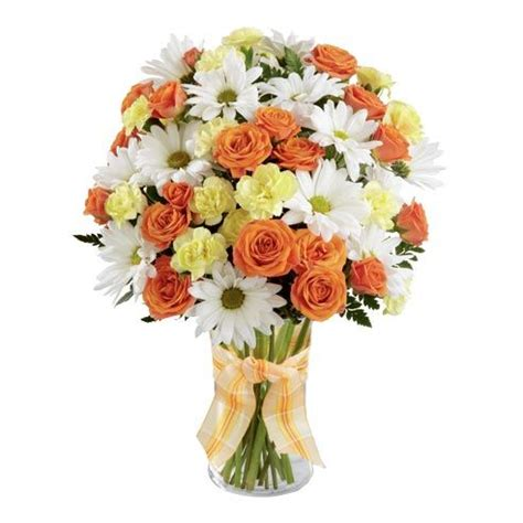 Send Flowers Cheap by 11 Best Cheap Flowers 30 Images On