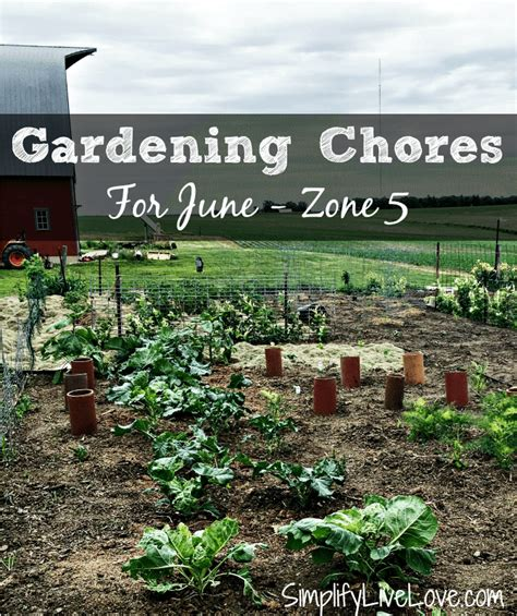 gardening zone 5 garden design zone 5 garden xcyyxh
