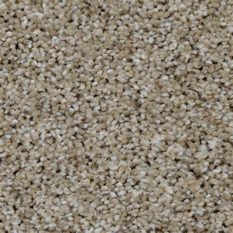 S13 Carpet by Dreamweaver Carpet Reviews Carpet Vidalondon