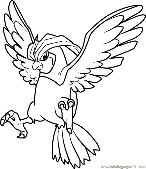 pokemon coloring pages talonflame 78 pokemon coloring pages talonflame pokmon