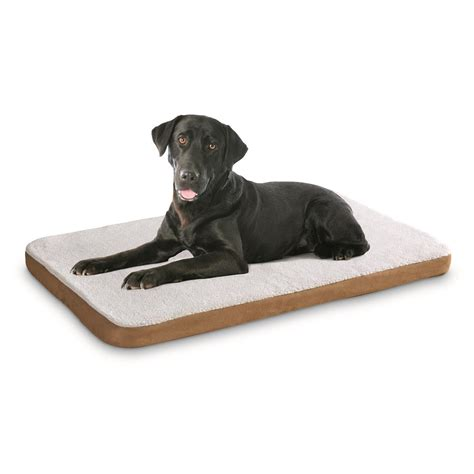 heated dog beds heated pet bed 622694 pet accessories at sportsman s guide