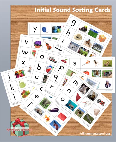printable montessori sound book free montessori printable initial sound sorting cards