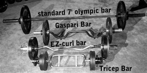 whats the world record for bench press world record for dumbbell curl