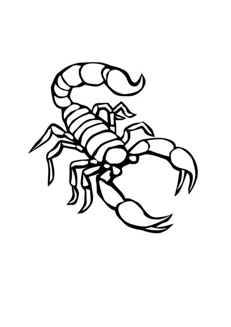 scorpio color free printable scorpion coloring pages for