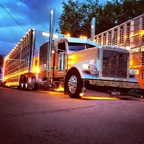 chicken lights and chrome 315 best chicken lights and chrome images on