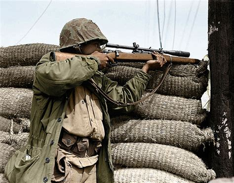 The Allied Sniper Rifles of WWII (VIDEO)   Alternative