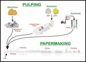 Paper Process Diagram - how paper made articlefind