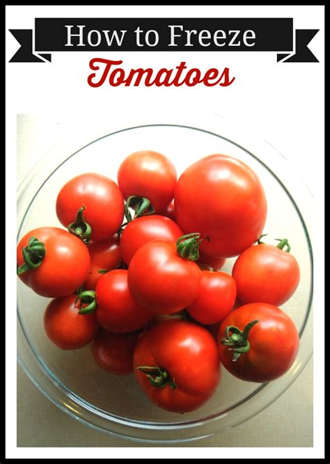 Freezing Tomatoes From The Garden by How To Freeze Tomatoes