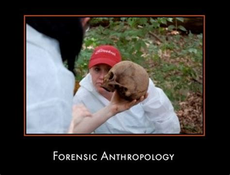 forensic anthropologist tools