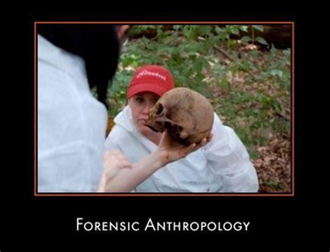 forensic anthropology skeleton analysis