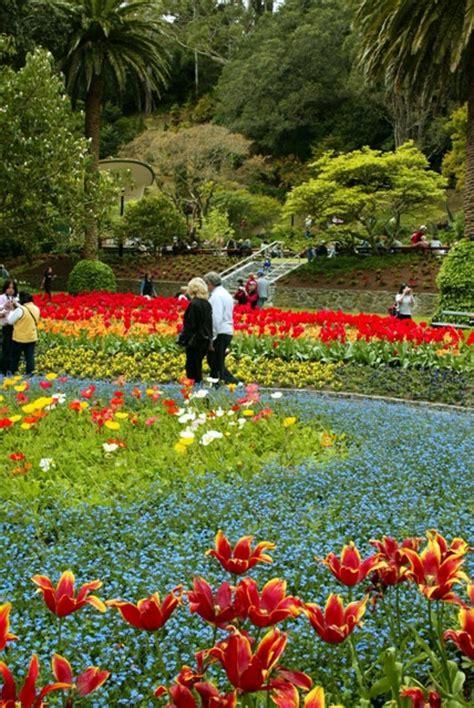 Wellington Botanical Gardens Wellington Botanic Garden