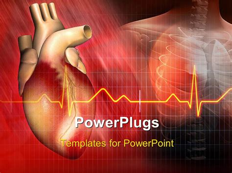 Powerpoint Template Heart And Ecg Rays With Human Skeleton In Background 16770 Cardiac Powerpoint Template