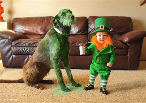 St Pandablack turns his 6 month baby into a leprechaun for st patrick s day bored panda